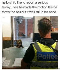 Dank, Hello, and 🤖: hello sir ild like to report a serious  felony... yes he made the motion like he  threw the ball but it was still in his hand  ofice  Mermes
