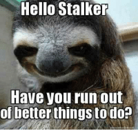 Stalker: Hello Stalker  Have you run out  of better  to do?