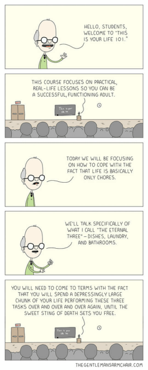 """srsfunny:  The Class I Need: HELLO, STUDENTS,  WELCOME TO """"THIS  IS YOUR LIFE IO1.""""  THIS COURSE FOCUSES ON PRACTICAL,  REAL-LIFE LESSONS SO YOU CAN BE  A SUCCESSFUL, FUNCTIONING ADULT.  This your  TODAY WE WILL BE FOCUSING  ON HOW TO COPE WITH THE  FACT THAT LIFE IS BASICALLY  ONLY CHORES  WE'LL TALK SPECIFICALLY OF  WHAT I CALL """"THE ETERNAL  THREE"""" DISHES, LAUNDRY,  AND BATHROOMS  YOU WILL NEED TO COME TO TERMS WITH THE FACT  THAT YOU WILL SPEND A DEPRESSINGLY LARGE  CHUNK OF YOUR LIFE PERFORMING THESE THREE  TASKS OVER AND OVER AND OVER AGAIN, UNTIL THE  SWEET STING OF DEATH SETS YOU FREE.  THE GENTLEMANSARMCHAIR.COM srsfunny:  The Class I Need"""