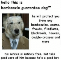 scams: hello this is  bamboozle guarantee dog  he will protect you  from any  bamboozles, scams  frauds, flimflam s.  blackmails, hoaxes  double-crosses and  more  his service is entirely free, but takie  good care of him because he's a good boy
