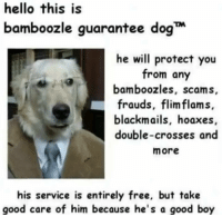 scams: hello this is  bamboozle guarantee dog  he will protect you  from any  bamboozles, scams,  frauds, flimflams,  blackmails, hoaxes,  double-crosses and  more  his service is entirely free, but take  good care of him because he's a good boy