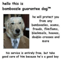 "Hello, Free, and Good: hello this is  bamboozle guarantee dog  he will protect you  from any  bamboozles, scams,  frauds, flimflams,  blackmails, hoaxes,  double-crosses and  more  his service is entirely free, but take  good care of him because he's a good boy <p>How Much You Can Pay For This Free Attorboy via /r/MemeEconomy <a href=""https://ift.tt/2JOdBqm"">https://ift.tt/2JOdBqm</a></p>"