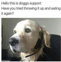 Hello, Doggo, and You: Hello this is doggo support  Have you tried throwing it up and eating  it again? Doggo I.T.