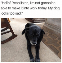 "@boywithnojob is a meme king: ""Hello? Yeah listen, I'm not gonna be  able to make it into work today. My dog  looks too sad."" @boywithnojob is a meme king"