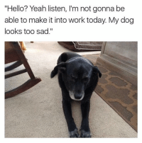 """Funny, Hello, and Yeah: """"Hello? Yeah listen, I'm not gonna be  able to make it into work today. My dog  looks too sad."""" Its against the law for your boss to make you come in to work if your dog looks sad"""