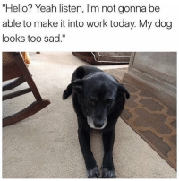 """Girl Memes, Dog, and Working: """"Hello? Yeah listen, l'm not gonna be  able to make it into work today. My dog  looks too sad."""" Me as a boss: ok u better pet him and tell him he's a good boy then!!"""