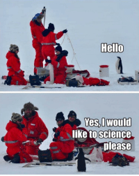 Hello, Memes, and Happy: Hello  Yes would  like toscienge  please One of my favorite wholesome memes. Happy Thursday! Stay warm, but if you are out in the cold, let science penguin do a science. Yes yes?