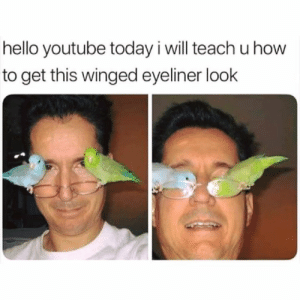 Hello, Instagram, and youtube.com: hello youtube today i will teach u how  to get this winged eyeliner look Instagram: @punsonly