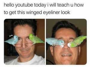 Winged Eyeliner: hello youtube today i will teach u how  to get this winged eyeliner look