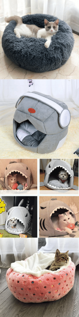 hellowinnerboy: Creative Space Cap Soft DogCat Bed, which is a good Choice for your Pets (available in S, M, L ) = OO1    //   OO2  = OO3   //   OO4  15% OFF Discount Code: Super15 : hellowinnerboy: Creative Space Cap Soft DogCat Bed, which is a good Choice for your Pets (available in S, M, L ) = OO1    //   OO2  = OO3   //   OO4  15% OFF Discount Code: Super15