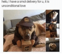 Maybe now I'll get my package on time  - Sad Comics: helo, have a smol delivery for u, it is  unconditional love  UPS  Ups Maybe now I'll get my package on time  - Sad Comics