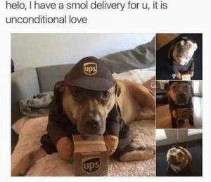 Me @ my boyfriend: helo, I have a smol delivery for u, it is  unconditional love  ups  ups Me @ my boyfriend