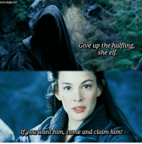 Elf, Memes, and Winter: helordofpotter  Give up the halfling,  she elf  If you want him, come and claim him! Some girl power 💪 I really wish we got to see more of Arwen in Lotr though! 💕 • Today was a monday 😂 No but my day started of with bikinig in snow (aka. Impossible and near death experience), and realising the train I hurried to was not gonna show up 😅 But it all went better after that 💕 • And yes I hate snow. ❄How are you supposed to get to places? And go on walks without freezing your ass off? Sorry but nope, can I stay under my blanket? 😂☕ • Qotd: Do you like winter? 💕 • Keep your head up cutiepie, don't let your crown fall 😘👑 thehobbit lordoftherings tolkien fellowshipofthering arwen evenstar elves ringwraith blackrider girlpower courage hobbits frodo baggins rivendell