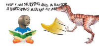 "Rap, Reddit, and Help: HELP AM STUDYNG AND A RAP  IS THROWING BANANS ATM <p>[<a href=""https://www.reddit.com/r/surrealmemes/comments/85hmy7/bananas/"">Src</a>]</p>"