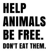 It's this simple. govegan vegansofig mercyforanimals loveanimals kindness freedom animallovers vegan animals: HELP  ANIMALS  BE FREE  DON'T EAT THEM. It's this simple. govegan vegansofig mercyforanimals loveanimals kindness freedom animallovers vegan animals