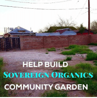 Help my friends @highconsciousness and @bornillegal get a community garden up and running. This is so dope. Let's help make this world a better place 🙌🙏 GrowGardensNotLawns💫💚🍃LINK IN @highconsciousness BIO greetings famiily! the the day is here! i am at the cycle where i can begin starting bigger projects and initiatives to help improve the quality of life on planet earth beyond my own lead by example lifestyle - ive been relearning and gathering experience and together with my partner, i am ready to start translating that to co-creating with you all this will be the space of healing love [located in what is now known as downtown phoenix arizona] what ii am calling the SOVEREIGN ORGANICS COMMUNITY GARDEN INITIATIVE❣GOAL: transform this space into a lush VEGANIC garden and learning space for the biodiversity of the ecosystem and the health of the community -- to provide food and medicine for those in need [hand deliver meals-produce bpbm style] + providing organic plant based ingredients for www.sovereignorganics.org▪maintain a free book drop box-- downtown phoenix is a severe food desert, with nearly no grocery stores and few gardens. this is an effort to alleviate the food scarcity in the community of downtown phoenix. LOOKING FORWARD❣hold veganic gardening classes, vegan cooking classes, health and wellness [homemade items] classes [viision for classes let me know what yall think-- always free for anyone with a child, hope to maintain classes free for all but depends on subject matter, materials needed for class and donations, sustainability is the goal] items needed [as of 03-09] wood for building, drill, soil, shovels, hoses, compost bin, rain collection receptacle, clay pots, transportation fees to gather materials [homedepot truck rental + lyft], help cover rent costs❣A PHOTO OF THE RECEIPT FOR EVERY PURCHASE WILL BE UPLOADED HERE upcycling and reusing materials is the first choice in terms of donations, so any hand-down donations are beyond appreciated💫howeve