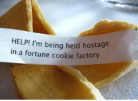 Memes, Help, and Today: HELP! I'm being held hostage  in a fortune cookie factory 56 Of Today's Freshest Pics And Memes