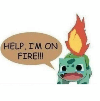 Anime, Bulbasaur, and Charmander: HELP, I'M ON  FIRE!!! Yep, every year Squirtle ... every year... 😓 Sent in by FunnyPokemonAmbassador @Yugioh5dscarly ! Thanks! ___________ Want to become an official Funny Pokemon Ambassador too? Then DM us your best and funniest pokemon memes to feature 😀 ___________ pokemon nintendo anime art spring likeme pokemon20 Disney japan videogames comics pikachu meme draw dankmemes pokemoncards followme pokemontcg dank pokemongo summer pokemonmemes lol cartoon tokyo charmander squirtle bulbasaur