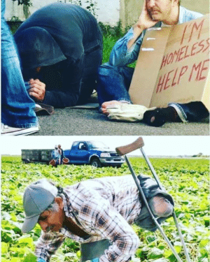 Ive seen panhandlers showing up to the same place and same time everyday , setting up shop for the day ( What if hes mentally unfit - people ask ?  Okay , im not entirely sure what the screening process is to become a farm workers , but im imaging if you show up to the same place everyday at the same time #yourhired #keepitrealupinthefield: HELP ME Ive seen panhandlers showing up to the same place and same time everyday , setting up shop for the day ( What if hes mentally unfit - people ask ?  Okay , im not entirely sure what the screening process is to become a farm workers , but im imaging if you show up to the same place everyday at the same time #yourhired #keepitrealupinthefield