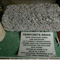 petrified: HEMP CRETE BRICK  MADE FROM HEMP HURDS,  LIME AND WATER.  AS IT CURES IT DRAws CARBON  DIOXIDE FROM THE ATMosPHERE,  AND PETRIFIES THE CELLUOSE  INTO STONE.  WITHIN 50 YEARS IT IS  SOLID AS A ROCK.  THIS BUILDING TECHNIQUE IS AT  LEAST 2000 YEARS OLD.