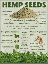 manganese: HEMP SEEDS  HIGH FIBER  COMPLETE  OMEGA's  PROTEIN  VITAMIN E  MANGANESE  MAGNESIUM  POTASSIUM  ANTI-  PHOSPHOROUS  ANTIOXIDANTS  INFLAMATORY  HEMP, THE MOST NUTRITIONALLY COMPLETE  FOOD SOURCE IN THE WORLD.  Per gram, Hemp has  Highs  What is it good for?  CALCIUM  BRAIN  IMMUNE  MORE DIGESTABLE  IRON  FUNCTION  FUNCTION  PROTEIN THAN SOY  AMINO ACIDS  FATTY ACIDS  VITAMIN A  MORE DIGE STABLE  ENZYMES  OMEGA's THAN FLAX  WEIGHT LOSS  Lows  SKIN  SATURATED  MORE DIGESTABLE  INFLAMATION  FAT  FIBER THAN KALE  CHOLESTEROL  REDUCES THE RISK OF  CARBS  HEART DISEASE & CANCER