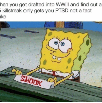 Meme, Memes, and Army: hen you get drafted into WWIII and find out a  killstreak only gets you PTSD not a tact  ake  SHOOK military militaryhumor militarymemes army navy airforce coastguard marines usmc airborne meme popsmoke