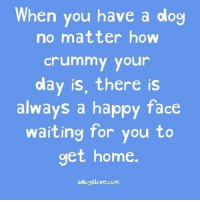 #jussayin: hen you have a dog  no matter how  crummy your  day is, there is  always a happy face  waiting for you to  get home  aologslove.com #jussayin