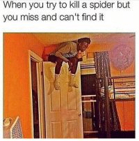 Spider, You, and Miss: hen you try to kill a spider but  you miss and can't find it This ever happen to y'all? 🕷😳😩 https://t.co/QBDfSHB15v