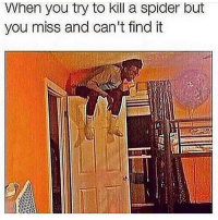 Spider, Hell, and You: hen you try to Kll a spider but  you miss and can't find it Oh hell nah I'm out 😤😂 https://t.co/wHyCCJIHzR