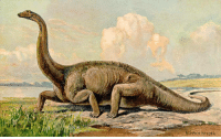 Dinosaur, Swag, and Target: HENRIH HARDER dai-rokuten-maou:  up-to-shaynanigans:  sizzybubbles:  horrible-lizards: Diplodocus, 1916, by Heinrich Harder    On my way to steal your girl.  I wouldn't be able to stop them. Too much swag.   you can tell by the way I use my walk I'm a dinosaur, no time to talk