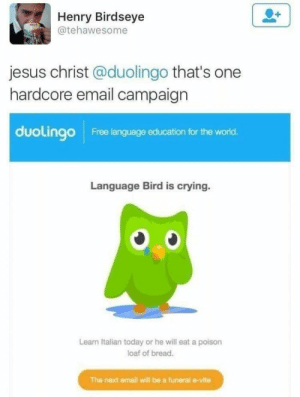 Tweet about the Duolingo owl using emotional manipulation: Henry Birdseye  @tehawesome  jesus christ @duolingo that's one  hardcore email campaign  duolingo  Free language education for the world.  Language Bird is crying.  Learn Italian today or he will eat a poison  loaf of bread.  The next email will be a funeral e-vite Tweet about the Duolingo owl using emotional manipulation
