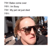"""Come Over, Memes, and Tumblr: Her: Babe come over  Him : Im Busy  Her: My pet rat just died  Him: <p><a href=""""https://infowithattitude.tumblr.com/post/171005284303/subscribe-for-hilarious-memes"""" class=""""tumblr_blog"""">infowithattitude</a>:</p>  <blockquote><p>Subscribe for hilarious memes</p></blockquote>"""