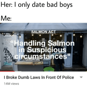 "That guy's holdin' a Salmon weirdly.: Her: I only date bad boys  Me:  SALMON ACT  ""Handling Salmon  in Suspicious  circumstances""  I Broke Dumb Laws In Front Of Police  14M views That guy's holdin' a Salmon weirdly."
