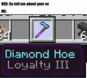 Hoe, Diamond, and Irl: HER: So tell me about your ex  ME:  Diamond Hoe  Loyalty III Me_irl