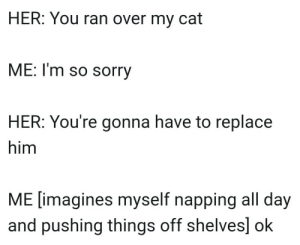 Sorry, Her, and Cat: HER: You ran over my cat  ME: I'm so sorry  HER: You're gonna have to replace  him  ME [imagines myself napping all day  and pushing things off shelves] ok me🐈irl