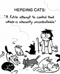 Sanderson - On the Road - Page 2 Thumb_herding-cats-futile-attempt-to-control-that-which-is-inherently-31231330