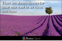 Memes, Flowers, and 🤖: here are always flowers for  those who want to see them.  Henri Matisse  Brainy  Quote There are always flowers for those who want to see them. - Henri Matisse