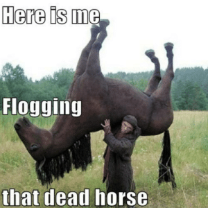 Be Like, Memes, and Horse: Here is me  Flogging  that dead horse Joergen memes be like