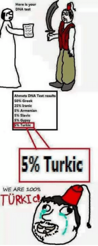 Here is your  DNA test  Ahmet DNA Test results  50% Greek  25% Iranic  Armenian  5%.  5% Slavic  Turkic  5% Turkic  WE ARE 100%  TURKIC i just found this extra spicy and dope meme outta nowhere (somewhere in le dark side of le net). Kebab is of greek ~ Tsar
