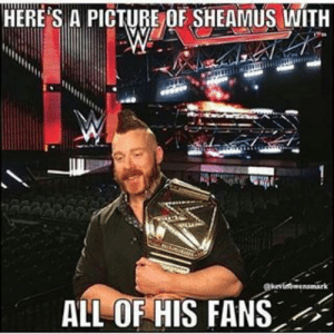 29 Hilarious WWE Memes | QuotesHumor.com: HERE S A PICTURE OF SHEAMUS WITH  ALLOF HIS FANS 29 Hilarious WWE Memes | QuotesHumor.com