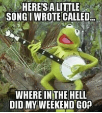 Memes, The Weekend, and Sunday: HERE SA LITTLE  SONGI WROTE CALLED  WHERE IN THE HELL  DID MY WEEKEND GO 20 Sunday Night Memes That Sum Up The Weekend Ending