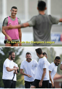 Memes, Champions League, and Good: here toin the Champions League Cristiano has a good sense of humour  (📷: @Skricardi ) https://t.co/gkcF5AK4TJ