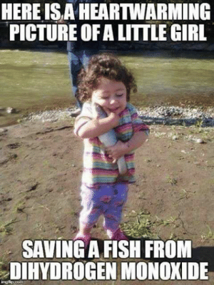 """dihydrogenmonoxideawareness:  Use the coupon code """"Hero"""" to get 20% off your order this weekend only!http://bit.ly/2IwWU23: HEREISA HEARTWARMING  PICTURE OF A LITTLE GIRL  SAVING A FISH FROM  DIHYDROGEN MONOXIDE dihydrogenmonoxideawareness:  Use the coupon code """"Hero"""" to get 20% off your order this weekend only!http://bit.ly/2IwWU23"""