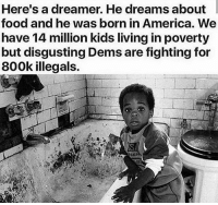 "America, Food, and Memes: Here's a dreamer. He dreams about  food and he was born in America. We  have 14 mi rty  but disgusting Dems are fighting for  800k illegals.  llion kids living in pove Let's help the dreamers inside our OWN country before we accept the ""dreamers"" from others. AMERICA FIRST!🇺🇸🇺🇸 presidenttrump resist stupidliberals merica america stupiddemocrats donaldtrump trump2016 patriot trump yeeyee presidentdonaldtrump draintheswamp makeamericagreatagain trumptrain triggered Partners --------------------- @too_savage_for_democrats🐍 @raised_right_🐘 @conservativemovement🎯 @millennial_republicans🇺🇸 @conservative.nation1776😎 @floridaconservatives🌴"