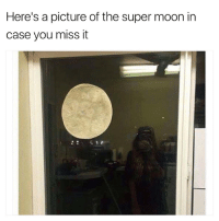 memes: Here's a picture of the super moon in  case you miss it