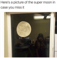 Memes, Excite, and Moon: Here's a picture of the super moon in  case you miss it From a fan...in case you missed all the excitement...