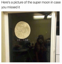Dank, Moon, and A Picture: Here's a picture of the super moon in case  you missed it