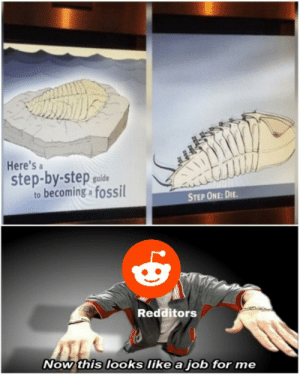 Ah, Depression!: Here's a  step-by-step puide  to becoming fossil  STEP ONE: DIE.  Redditors  Now this looks like a job for me Ah, Depression!