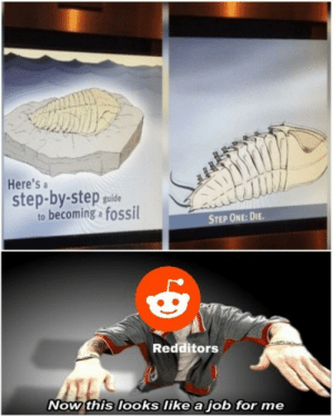 Ah, Depression! by YashSSJB1 MORE MEMES: Here's a  step-by-step puide  to becoming fossil  STEP ONE: DIE.  Redditors  Now this looks like a job for me Ah, Depression! by YashSSJB1 MORE MEMES