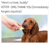 "Lol, Omg, and Thank You: ""Here's a treat, buddy""  VOTER: OMG THANK  YOU Dimmediately  forgets injusticel woof woof demos for lunch lol"